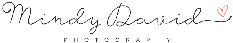 Mindy David Logo